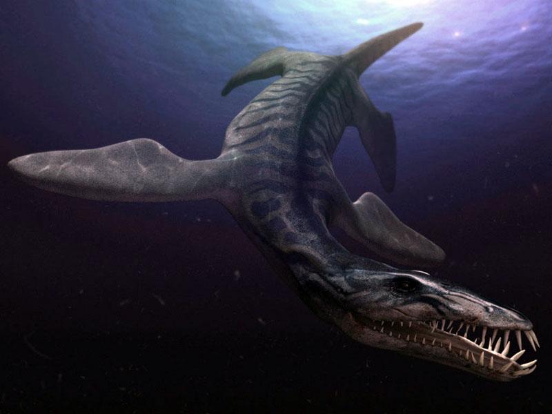 """Résultat de recherche d'images pour """"liopleurodon"""""""