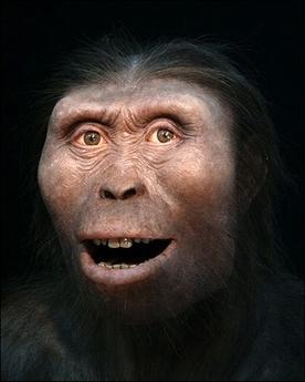 Homo erectus 1995 by joe damato - 3 part 8