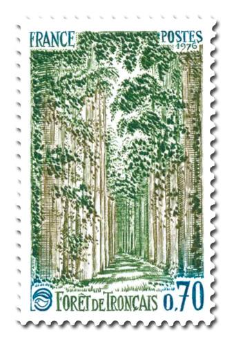 Forêt de Tronçais (Allier)