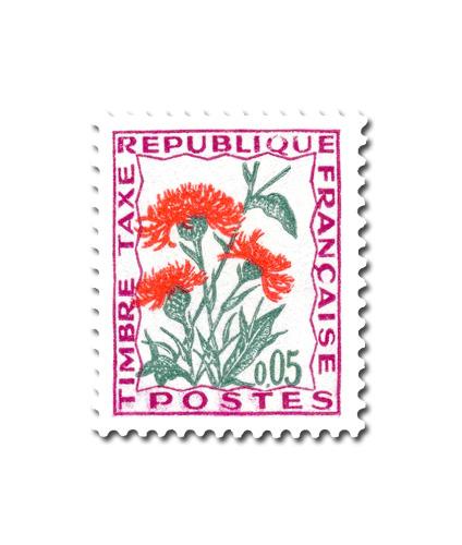Fleurs des champs  - Centaurée  jacée.