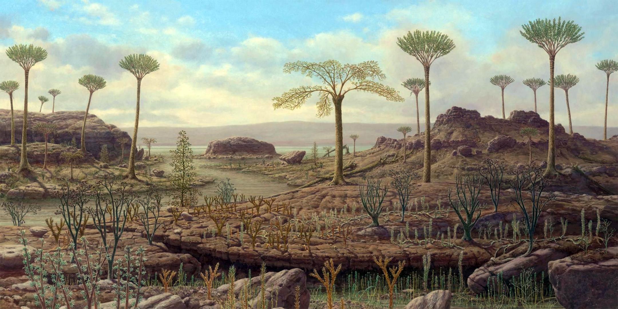 несколько вариантов, картинки растений триасового периода х-образные